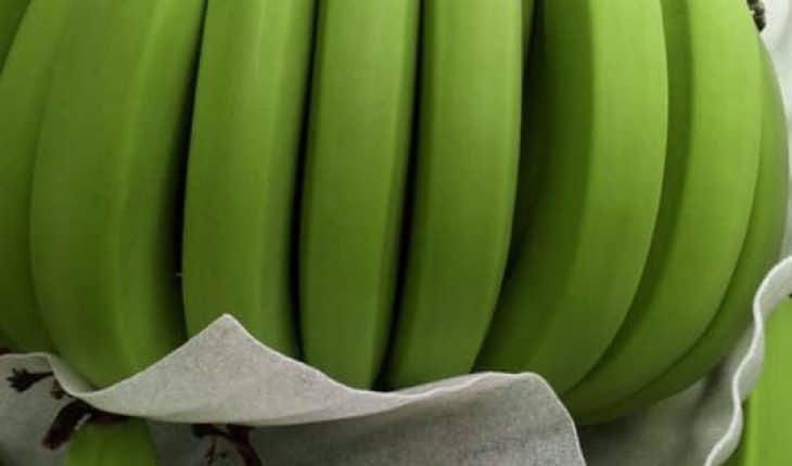 Nên ăn nhiều trái cây và rau quả